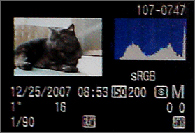 in camera histogram